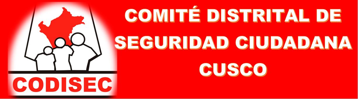 COMITE DE SEGURIDAD CIUDADANA